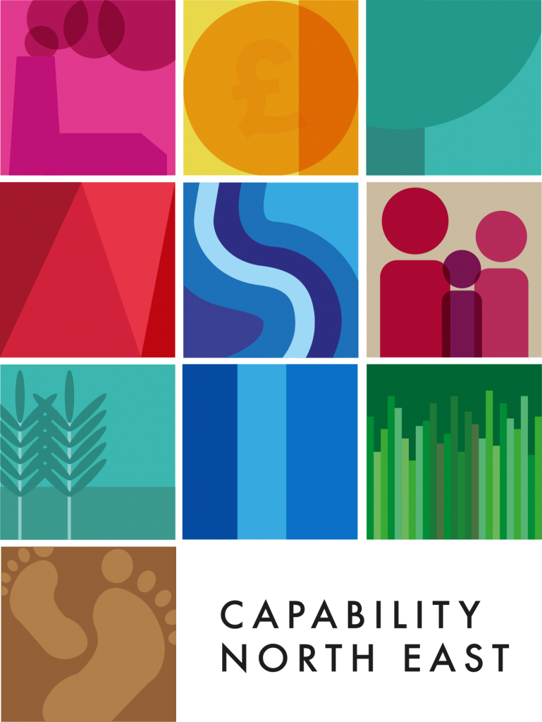 H13 - Capability North East